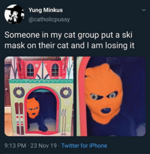 Meow The Jewels!: Yung Minkus  @catholicpussy  Someone in my cat group put a ski  mask on their cat and I am losing it  00  9:13 PM 23 Nov 19 Twitter for iPhone Meow The Jewels!