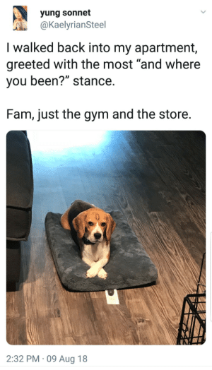 "Fam, Gym, and Back: yung sonnet  @KaelyrianSteel  I walked back into my apartment,  greeted with the most ""and where  you been?"" stance  Fam, just the gym and the store  2:32 PM 09 Aug 18"