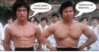 Gym, Memes, and Forever: YUNO SHRED  FOR FESTIVAL?!?  FOREVER BULK  BRAHHHH........ A Gym Memes classic.