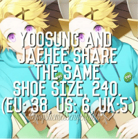 Anime, Facts, and Memes: YUOSUNGAND  JAEE HARE  HE SAM  SHOE SIZE, 240  HE  THE open for more🌌 | Info by: - ⠀ ❄ Character: Yoosung Kim & Jaehee Kang ⠀ Sorry for not posting 2 days! I was (and still am) pretty busy these days ahh ⠀ Q ♔ - A ♚ -⠀ -《 🌸🍃 》 ⠀ ταgs ‿➹⁀ MysticMessenger Zen RyuHyun JaeheeKang JuminHan Yoosung YoosungKim Seven 707 LucielChoi SaeyoungChoi SaeranChoi Saeran Rika V Otome OtomeGame Facts MysticMessengerFact Anime ☞This fact is proven!☜