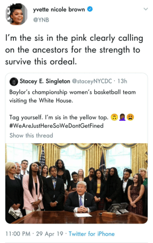 Basketball, Blackpeopletwitter, and Funny: yvette nicole brown  @YNB  I'm the sis in the pink clearly calling  on the ancestors for the strength to  survive this ordedl  Stacey E. Singleton @staceyNYCDC 13h  Baylor's championship women's basketball team  visiting the White House.  Tag yourself. I'm sis in the yellow top.  #WeArelustHeresoweDontGetFined  Show this thread  11:00 PM 29 Apr 19 Twitter for iPhone We TOTALLY want to be here