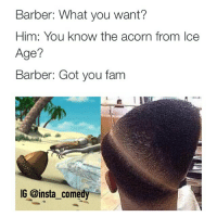 😭😭😭: Barber: What you want?  Him: You know the acorn from Ice  Age?  Barber: Got you fam  IG @insta comedy 😭😭😭