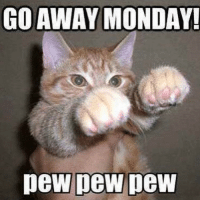 😆: GO AWAY MONDAY!  pew pew pew 😆