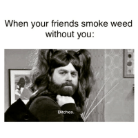 Little bitches!: When your friends smoke weed  without you:  Bitches Little bitches!