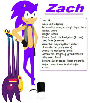 Nice: Zach  Age: 18  Species: Hedgehog  Personality: calm, strategic, loyal, born  leader, brave  Height: 105cm  Family: Sonic the Hedgehog (father)  Amy Rose (mother)  Zara the Hedgehog (half-sister)  Sonia the Hedgehog (aunt)  Manic the Hedgehog (uncle)  Aleena the Hedgehog (grandmother)  Alignment: Good  Powers: Super speed, Super strength,  Super form, Chaos Control, Spin  attack Nice