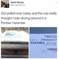 Gold.: Zach Panza  akungfupanza  Got pulled over today and the cop really  thought I was driving around ina  Pontiac Harambe  VEHICL1  tate Pennsylv  HARAMBE Color  H A R A M E  OWNER Gold.