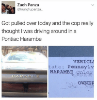 Pontiac Harambe 😂😂: Zach Panza  @kung fupanza  Got pulled over today and the cop really  thought I was driving around in a  Pontiac Harambe  VEHICL1  tate Pennsylv  HARAMBE golori  H A R A M 13 E  OWNER Pontiac Harambe 😂😂