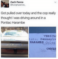 Over Today: Zach Panza  @kung fupanza  Got pulled over today and the cop really  thought I was driving around in a  Pontiac Harambe  VEHICL1  tate Pennsylv  HARAMBE Color  H A R A M B E  OWNER