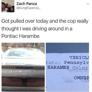 memehumor:  Cooler than an Aztek: Zach Panza  @kungfupanza  Got pulled over today and the cop really  thought I was driving around in a  Pontiac Harambe  VEHICL  tate: Pennsylv  HARAMBE Color  HARAMBE  OWNER memehumor:  Cooler than an Aztek