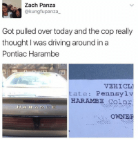 Thankful for Harambe: Zach Panza  @kungfupanza  Got pulled over today and the copreally  thought I was driving around in a  Pontiac Harambe  VEHICL3  tate: Pennsylv  HARAMBE golor  H A R A M 13 E  OWNER Thankful for Harambe