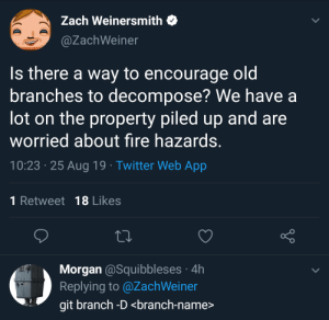 I like the -D: Zach Weinersmith  @ZachWeiner  Is there a way to encourage oldi  branches to decompose? We have a  lot on the property piled up and are  worried about fire hazards.  10:23 25 Aug 19 Twitter Web App  1 Retweet 18 Likes  Morgan @Squibbleses 4h  Replying to @ZachWeiner  git branch -D <branch-name> I like the -D