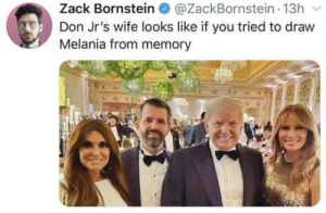 Like father like son: Zack Bornstein  @ZackBornstein 13h  Don Jr's wife looks like if you tried to draw  Melania from memory Like father like son