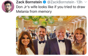 Used to much shading on her face: @ZackBornstein - 13h  Zack Bornstein O  v  Don Jr's wife looks like if you tried to draw  Melania from memory Used to much shading on her face