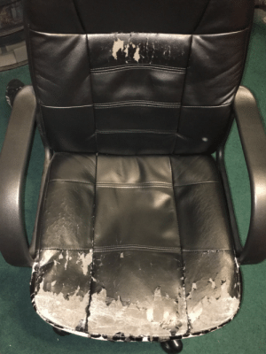 zackisontumblr:  kallmejonesy:  zackisontumblr:  i probably spend too much time in my computer chair  This is my brother.   sorry for sitting on him : zackisontumblr:  kallmejonesy:  zackisontumblr:  i probably spend too much time in my computer chair  This is my brother.   sorry for sitting on him