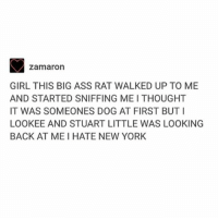 Ass, Memes, and New York: zamaron  GIRL THIS BIG ASS RAT WALKED UP TO ME  AND STARTED SNIFFING MEI THOUGHT  IT WAS SOMEONES DOG AT FIRST BUT I  LOOKEE AND STUART LITTLE WAS LOOKING  BACK AT MEI HATE NEW YORK remi's stepping it up - Max textpost textposts