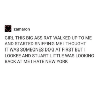 Ass, Fucking, and Love: zamaron  GIRL THIS BIG ASS RAT WALKED UP TO ME  AND STARTED SNIFFING ME I THOUGHT  IT WAS SOMEONES DOG AT FIRST BUTI  LOOKEE AND STUART LITTLE WAS LOOKING  BACK AT ME I HATE NEW YORK Good morning. I fucking love everything about NYC