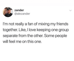 Meirl: zander  @alezander  I'm not really a fan of mixing my friends  together. Like, I love keeping one group  separate from the other. Some people  will feel me on this one. Meirl
