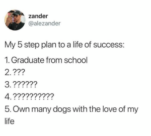 Dank, Dogs, and Life: zander  @alezander  My 5 step plan to a life of success:  1. Graduate from school  2.???  5. Own many dogs with the love of my  life At least I achieved 2,3&4: endless questions and confusion  By alezander | TW