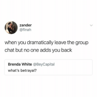 Facts, Group Chat, and Memes: zander  @finah  when you dramatically leave the group  chat but no one adds you back  Brenda White @BeyCapital  what's betrayal? Facts