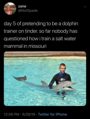 i'm losing hope in mankind: zane  @NotSpade  10T  day 5 of pretending to be a dolphin  trainer on tinder. so far nobody has  questioned howi train a salt water  mammal in missouri  Se  12:06 PM 6/29/19 Twitter for iPhone i'm losing hope in mankind