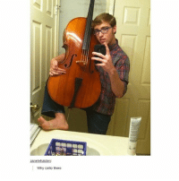 The toes...: zanetehaiden  Why cello there The toes...