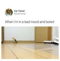 Bad, Bored, and Funny: Zar Famai  @ZarFamai  When i'm in a bad mood and bored Guess I ain't the only one. (Twitter: ZarFami, @superdeluxe)