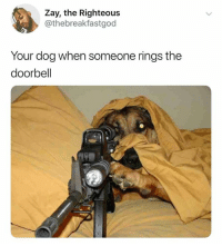Memes, Snapchat, and 🤖: Zay, the Righteous  @thebreakfastgod  Your dog when someone rings the  doorbell Add us on Snapchat : DankMemesGang 😏😏👌👌