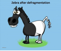 Zebra and After: Zebra after defragmentation After defragmentation
