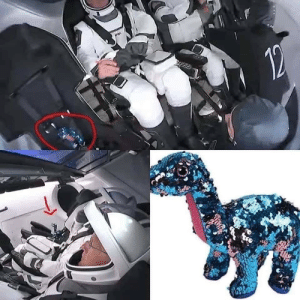 Zero-G detection by means of a fabric reptile analogue: Zero-G detection by means of a fabric reptile analogue