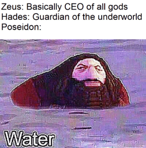 Ps1 hagrid is as hot as a god: Zeus: Basically CEO of all gods  Hades: Guardian of the underworld  Poseidon:  m-Seq  Water Ps1 hagrid is as hot as a god