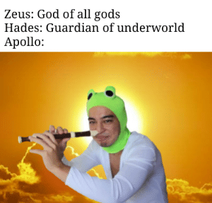 Greek god memes are a thing now: Zeus: God of all gods  Hades: Guardian of underworld  Apollo: Greek god memes are a thing now