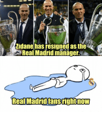 BREAKING: Zidane has resigned as the Real Madrid manager https://t.co/hOx1Ghe5Hh: Zidanehas resigned as the  Real Madrid manager  Real MadridfansrightnoW BREAKING: Zidane has resigned as the Real Madrid manager https://t.co/hOx1Ghe5Hh
