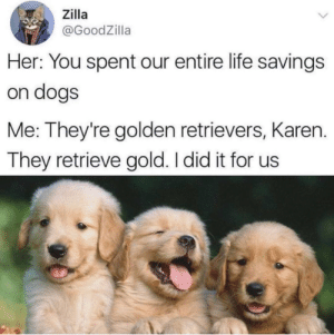 Dank, Dogs, and Life: Zilla  @GoodZilla  Her: You spent our entire life savings  on dogs  Me: They're golden retrievers, Karen.  They retrieve gold. I did it for us A smart investment by DisDudeForReal FOLLOW HERE 4 MORE MEMES.