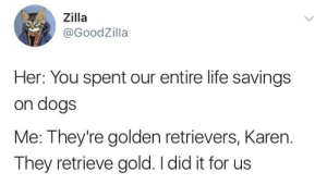 Me irl by Cappucci FOLLOW 4 MORE MEMES.: Zilla  @GoodZilla  Her: You spent our entire life savings  on dogs  Me: They're golden retrievers, Karen.  They retrieve gold. I did it for us  CESASAS Me irl by Cappucci FOLLOW 4 MORE MEMES.
