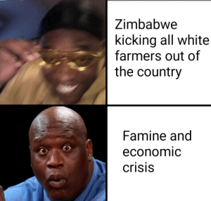 Robert Mugabe : Yeah this is big brain time: Zimbabwe  kicking all white  farmers out of  the country  Famine and  economic  crisis Robert Mugabe : Yeah this is big brain time
