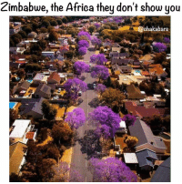 I have to visit Zimbabwe 🇿🇼 one day :) @ghanaposts Big up to all people from that region ❤🖤💚: Zimbabwe, the Africa they don't show you  chakabars I have to visit Zimbabwe 🇿🇼 one day :) @ghanaposts Big up to all people from that region ❤🖤💚