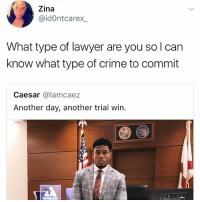 I lold: Zina  @idOntcarex  What type of lawyer are you so l can  know what type of crime to commit  Caesar @lamcaez  Another day, another trial win I lold