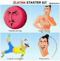 Memes, Cool, and Starter Kit: ZLATAN STARTER KIT @danleydon  Planetary sized ego.  Kung Fu physique.  DEAL  WITH IT  An eye for a wondergoal.  Pretty cool bun. daretozlatan 😂 Credits 👉 @danleydon