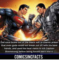 Batman, Disney, and Memes: Zod once broke out of the black volt (a cosmic prison  that even gods could not break out of) with his bare  hands, and used his heat vision to kill Captain  Boomerang before being forced back into it.  COMICSINCFACTS The fight scene between Superman and Zod in 'Man of Steel' was 😍😍 and one of my favorite fight scenes in any movie of all time🤷🏾‍♂️‼️‼️ Please Turn On Your Post Notifications For My Account😜👍! - - - - - - - - - - - - - - - - - - - - - - - - Batman Superman DCEU DCComics DeadPool DCUniverse Marvel Flash MarvelComics MCU MarvelUniverse Netflix DeathStroke JusticeLeague StarWars Spiderman Ironman Batman Logan TheJoker Like4Like L4L WonderWoman DoctorStrange Flash JusticeLeague WonderWoman Hulk Disney CW DarthVader Tonystark Wolverine