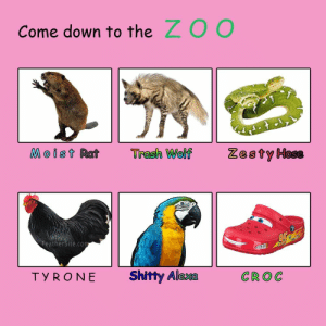 Welcome to the zoo by metso10 FOLLOW 4 MORE MEMES.: ZOO  Come down to the  Zesty Hose  Moist Rat  Trash Wolf  FeatherSite.com  Shitty Alexa  CROC  TYRONE Welcome to the zoo by metso10 FOLLOW 4 MORE MEMES.