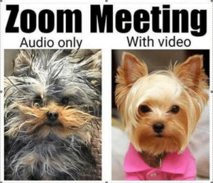 Zoom meeting reality: Zoom meeting reality