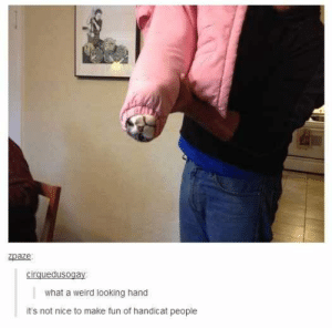 27 Of The Best Puns Ever On Tumblr...read them all! Do it!: zpaze  cirquedusogay  what a weird looking hand  it's not nice to make fun of handicat people 27 Of The Best Puns Ever On Tumblr...read them all! Do it!