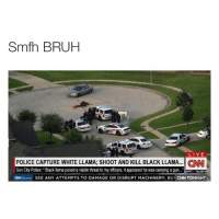 "Smfh why you gotta kill the black llama tho 😤😭😂: Smfh BRUH  LIVE  POLICE CAPTURE WHITE LLAMA: SHOOT AND KILL BLACK LLAMA… CNNl  Sun City Police:"" Black llama posed a viable threat to my officers, it appeared he was carrying a gun.""  TIDatL  CH Money SEE ANY ATTEMPTS TO DAMAGE OR DISRUPT MACHINERY, BUT CNN TONIGHT Smfh why you gotta kill the black llama tho 😤😭😂"