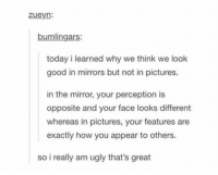Ugly, Good, and Mirror: zueyn:  bumlingars:  today i learned why we think we look  good in mirrors but not in pictures.  in the mirror, your perception is  opposite and your face looks different  whereas in pictures, your features are  exactly how you appear to others.  so i really am ugly that's great objects in the mirror may look prettier than they appear https://t.co/1m9qgItzGy
