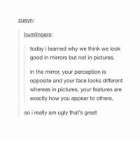 Memes, Ugly, and Good: zueyn.  bumlingars:  today i learned why we think we look  good in mirrors but not in pictures.  in the mirror, your perception is  opposite and your face looks different  whereas in pictures, your features are  exactly how you appear to others.  so i really am ugly that's great objects in the mirror may look prettier than they appear
