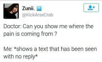 Doctor, Memes, and Texting: Zunii  KickArseCrab  Doctor: Can you show me where the  pain is coming from  Me: *shows a text that has been seen  with no reply* There ain't no painkillers for that.