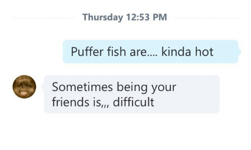 Friends, Fish, and Hot: Thursday 12:53 PM  Puffer fish are... kinda hot  Sometimes being your  friends is,, difficult