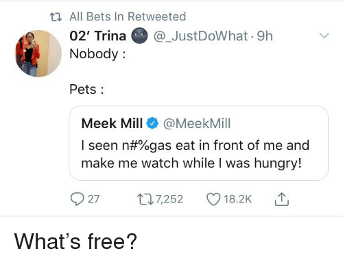 Blackpeopletwitter, Funny, and Hungry: ti All Bets In Retweeted  02' Trina@_JustDoWhat 9h  Nobody:  Pets  Meek Mill @MeekMill  I seen n#%gas eat in front of me and  make me watch while I was hungry!  27 t7252 18.2K T
