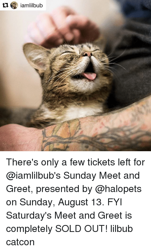 Ti iamlilbub theres only a few tickets left for sunday meet and memes sunday and ti iamlilbub theres only a few tickets left m4hsunfo