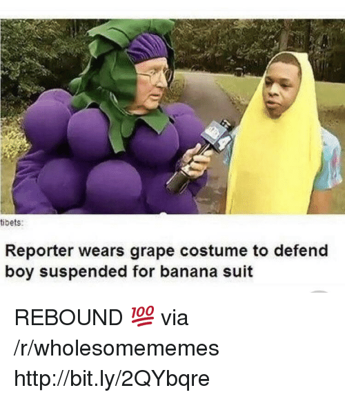 Banana, Http, and Boy: tibets:  Reporter wears grape costume to defend  boy suspended for banana suit REBOUND 💯 via /r/wholesomememes http://bit.ly/2QYbqre